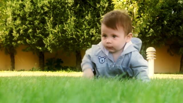 baby crawling sull'erba - neonati maschi video stock e b–roll