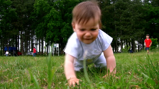Baby crawling on the grass video