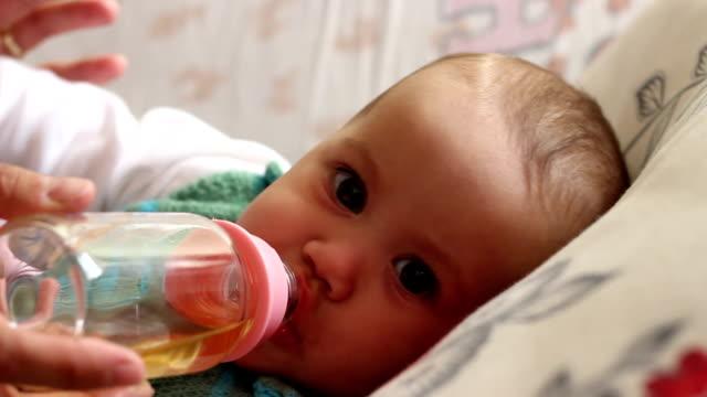stockvideo's en b-roll-footage met baby drinking tea - camelia white