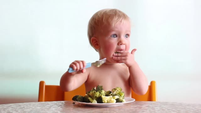 baby eats with pleasure steamed broccoli by fork, happy vegan kid, child on white background - vegan stock videos and b-roll footage
