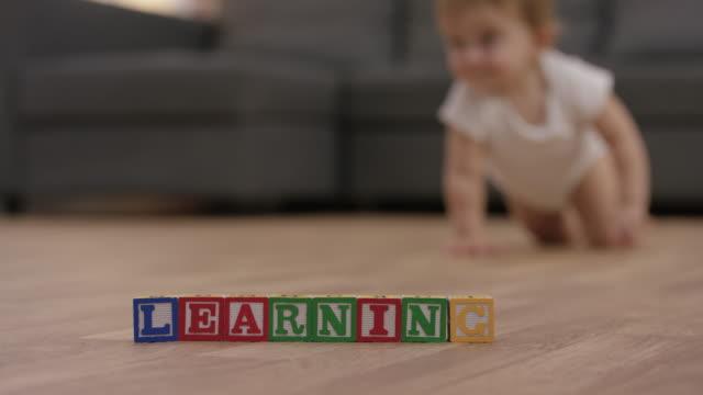 Baby Girl Crawling video