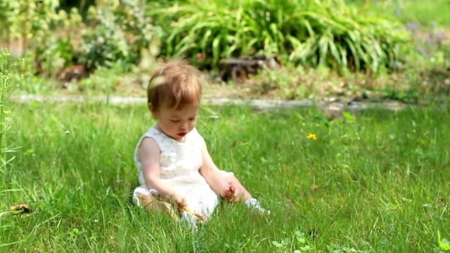 Baby girl trying to stand up on green grass video