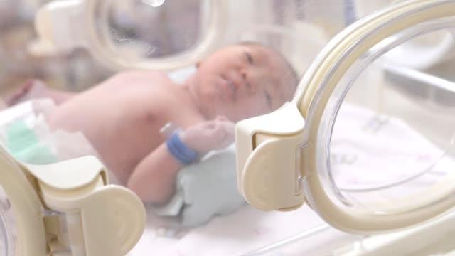 vidéos et rushes de bébé nouveau-né dans l'incubateur après l'accouchement - 0 11 mois