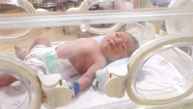 Bébé nouveau-né dans l'incubateur après l'accouchement - Vidéo