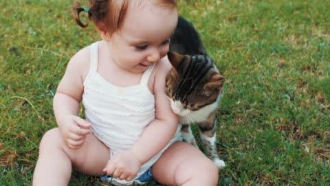 vídeos y material grabado en eventos de stock de bebé jugando con el gato al aire libre - mascota