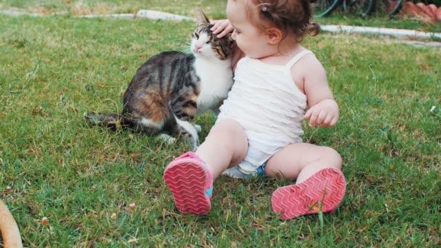 vídeos de stock e filmes b-roll de baby playing with cat on outdoor - felino