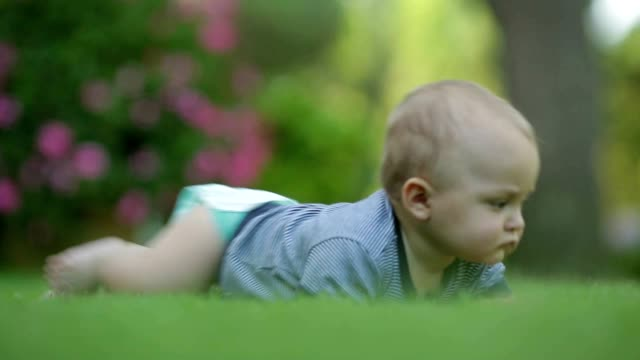 Baby wearing a diaper and exploring his surroundings. one year old baby crawling in the grass. Long lens shot of baby with beautiful bokeh. toddler exploring the world video