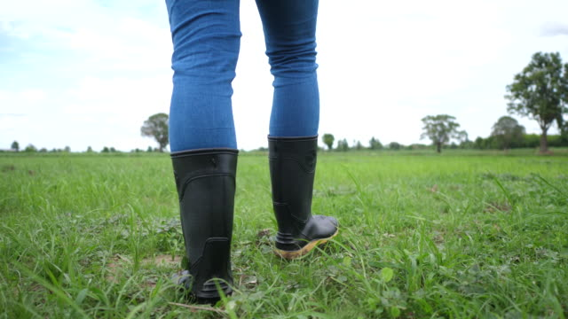 Back of Farmer goes in rubber boots on a green field - video