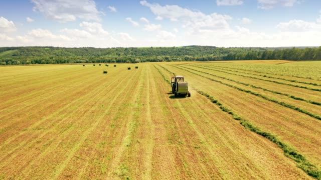 vidéos et rushes de vue arrière d'un tracteur recueillant le foin sur le domaine. - foin