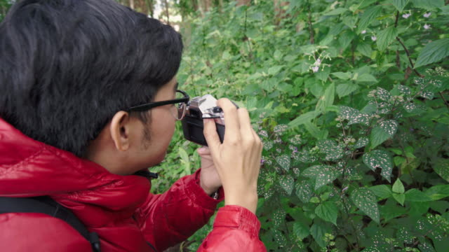 Back view of Asian male photographer taking a photo of wild flower video