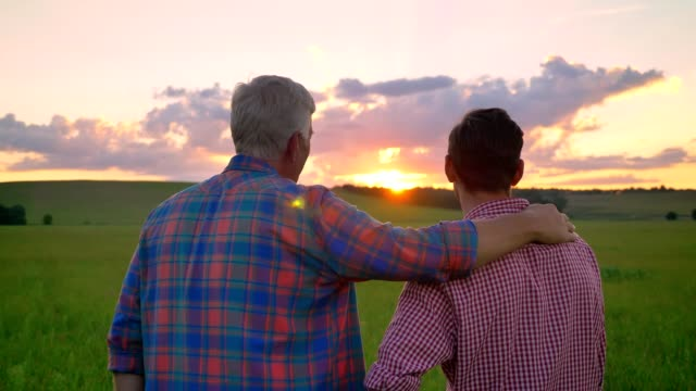 back view of father embracing adult son and watching beautiful sunset, standing on wheat or rye field - syn filmów i materiałów b-roll