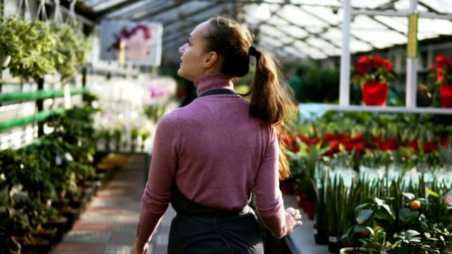 back view of female florist touching leaves of different plants while walking among rows of flowers in flower shop or greenhouse. slowmotion shot - giardino botanico video stock e b–roll