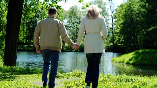 vídeos de stock e filmes b-roll de back view of loving mature couple walking towards lake in park holding hands. senior spouses standing near water, admiring scenic view and talking - man admires forest
