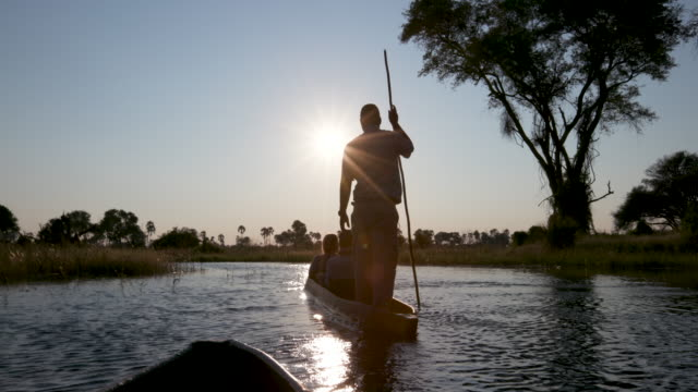 Back view of tourists enjoying a ride on a Mokoro at sunset video