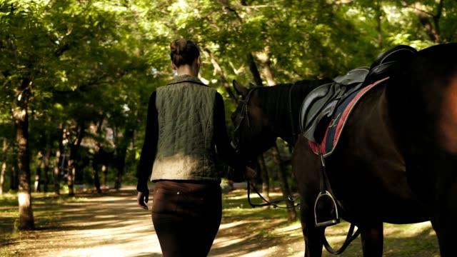 vidéos et rushes de vue arrière du jeune brunette fille jokey marche à cheval dans le parc au cours de la journée ensoleillée - dressage équestre