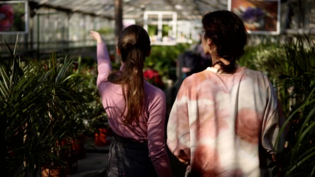 back view of young female florist walking with a client and showing her different plants, explaining information. young woman is listening carefully to the florist - giardino botanico video stock e b–roll
