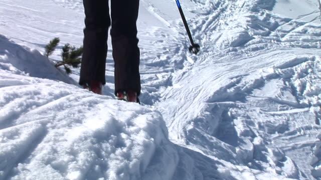 HD: Backcountry Skiing video