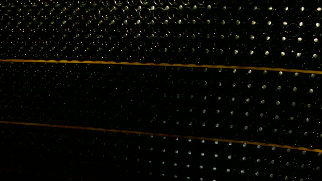background - bottles of champagne in the basement of the winery video