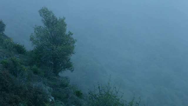 Background for mysterious story, horror film atmosphere, dangerous foggy cliff video