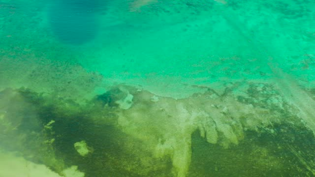 Background image of the turquoise sea. Deep sea and corals
