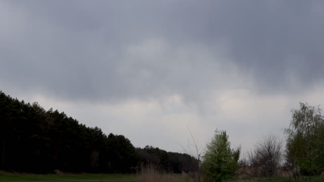 Background of dark clouds before a thunderstorm over spring fields and forest video