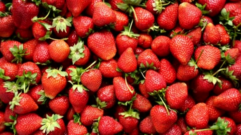 vidéos et rushes de vue de dessus de fond de fraises tournantes - fraise