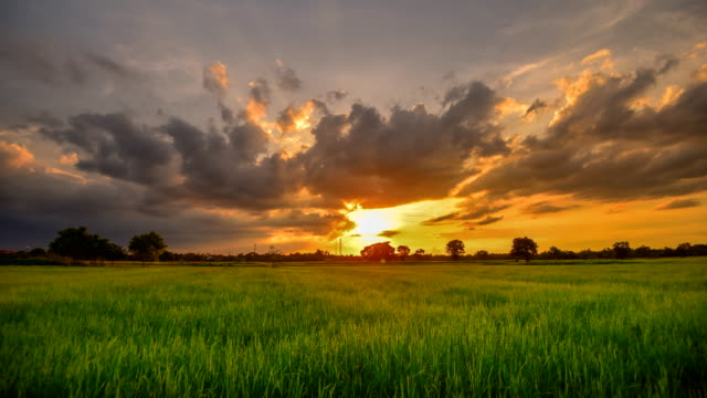 backgrounds sunset at cloud time lapse - sunset stock videos & royalty-free footage