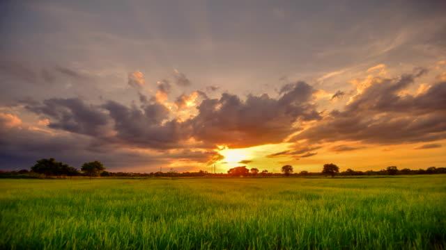 vídeos de stock e filmes b-roll de backgrounds sunset at cloud time lapse - vídeos de milho