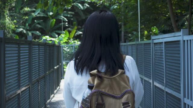 backpack of asian woman walking on canopy trail in rain forest - powojnik pnący filmów i materiałów b-roll