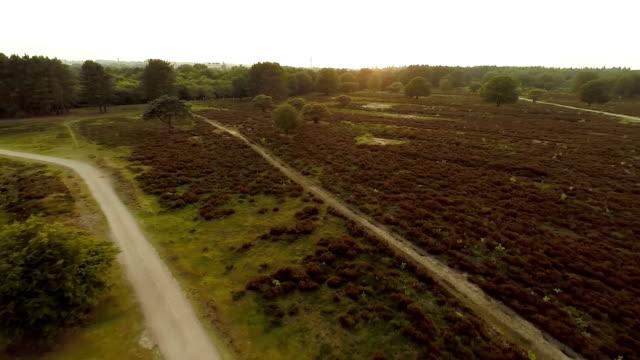 Backwards liftoff revealing landscape video