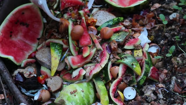 Backyard composter. Vegetable and fruit wastes Recycles Kitchen and Yard Waste heap stock videos & royalty-free footage