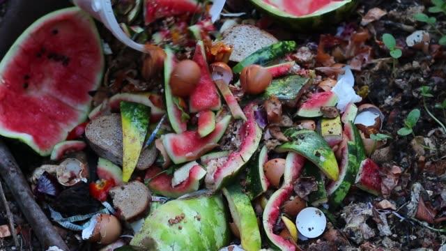 bakgård kompostorn. grönsaks- och avfall - food waste bildbanksvideor och videomaterial från bakom kulisserna