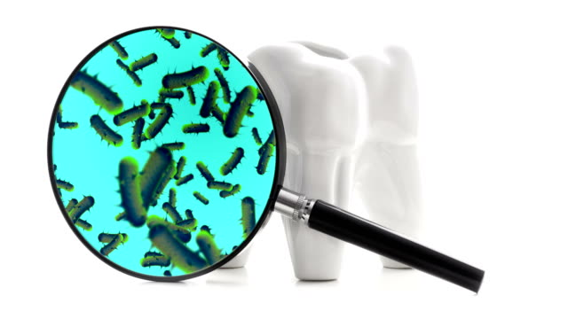 Bacterias and viruses around tooth video
