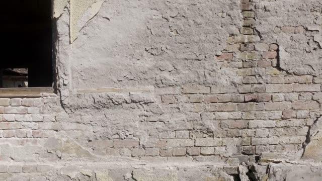 dåliga grunder på gammalt hus spruckna fasad vägg med tegel bakgrund under skalade cement, med rörelse - fasta bildbanksvideor och videomaterial från bakom kulisserna