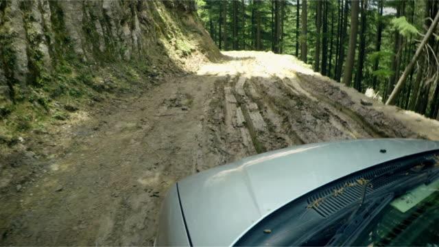 schlechte schlammigen straße durch einen kiefernwald in den bergen. - himachal pradesh stock-videos und b-roll-filmmaterial