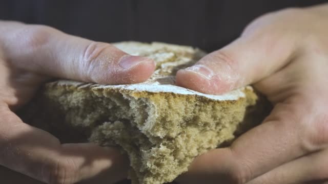 Baker hands breaking homemade bread. Close up view video