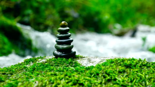 balanced stone - moss stock videos & royalty-free footage
