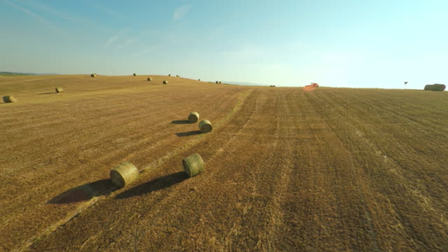 AERIAL Bales on a field video