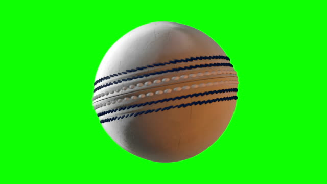 bola bola de CRICKET SPIN GS blanco - vídeo