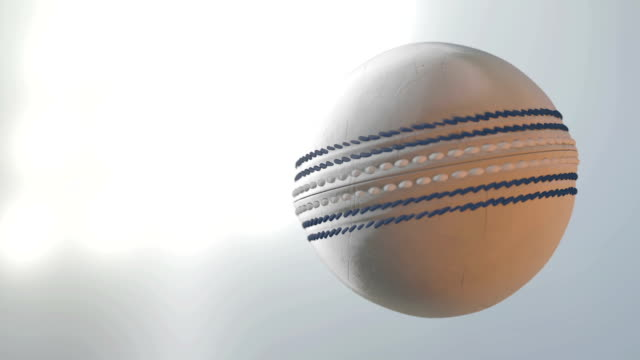 ball SPIN CRICKET BALL WHITE video