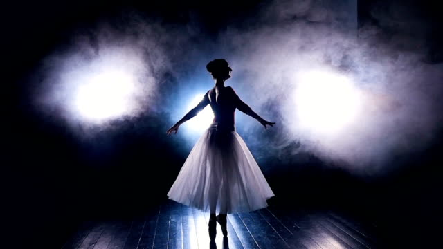 A ballerina dances in the artificial stage fog. video