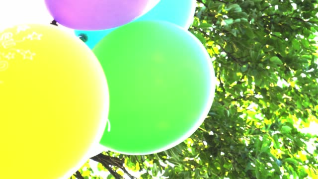 Balloons Happy Birthday Colorful Develop On The Background Of Sky And Foliage Slow Motion Stock Video More Clips 4K Resolution 999683808