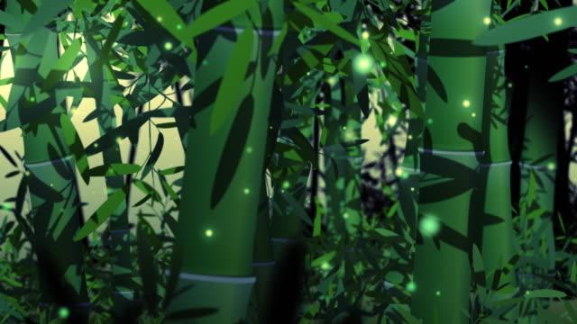 ホタルのようなライトで夜に竹畑。 - 七夕点の映像素材/bロール