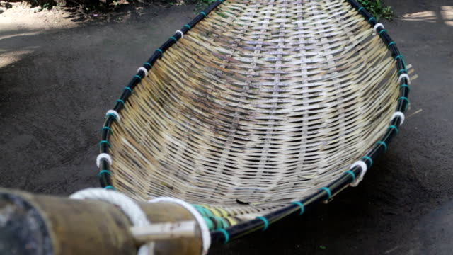 Bamboo hammock moving in the garden video