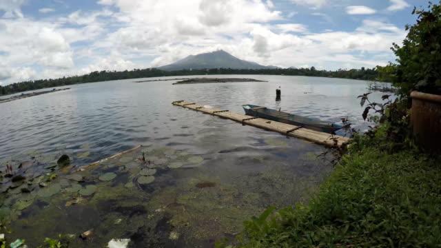 bambu flotte flyter på förorenade sjön - rådig bildbanksvideor och videomaterial från bakom kulisserna