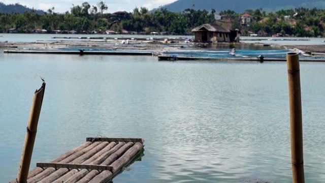 bambu flottar är transportmedel tenderar småskaliga vattenbruk jordbruk - blue yellow band bildbanksvideor och videomaterial från bakom kulisserna