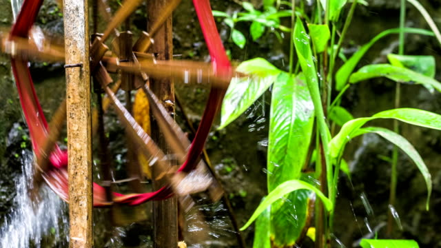 Bamboo water wheel used for irrigation, brings water from stream to plantation. Close-up of bamboo wheel delivering water. Asia video