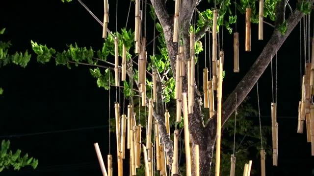 bamboo were hang on tree and swing by wind in night garden