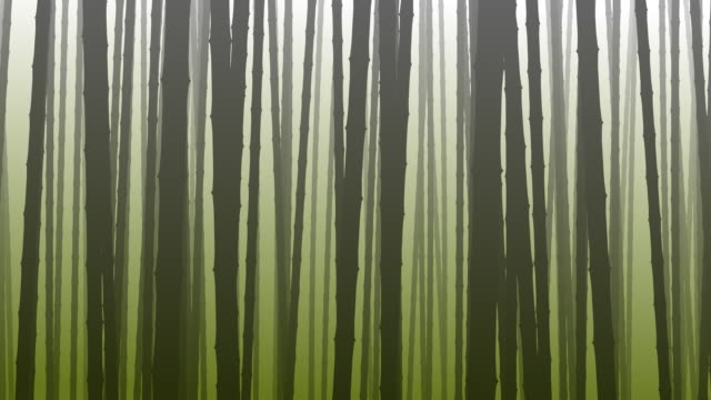 Bamboos in the Fog Loopable video
