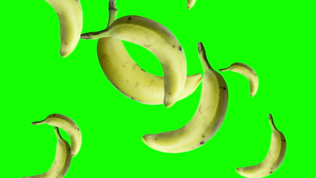 bananas falling green screen video